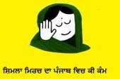 Punjabi Troll Bhain Ji